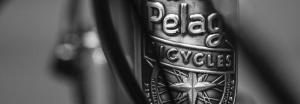 Pelago Bicycle