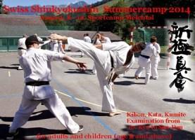 2014_Swiss_Summercamp-Kopi