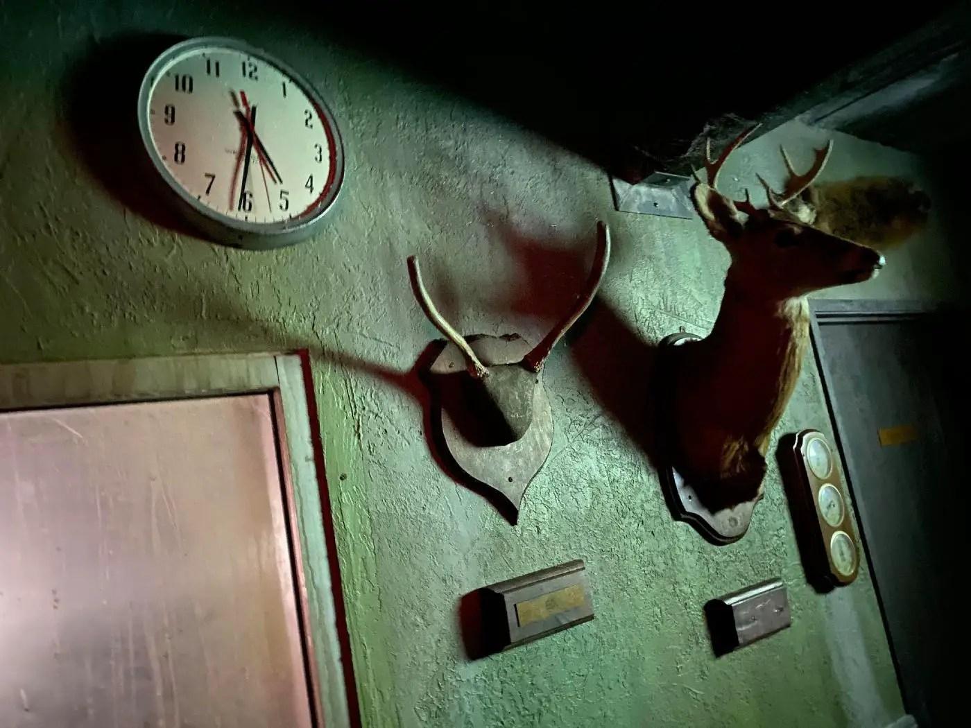 Escape Blair Witch - Escape Room - Las Vegas - NV - Egan Escape Productions