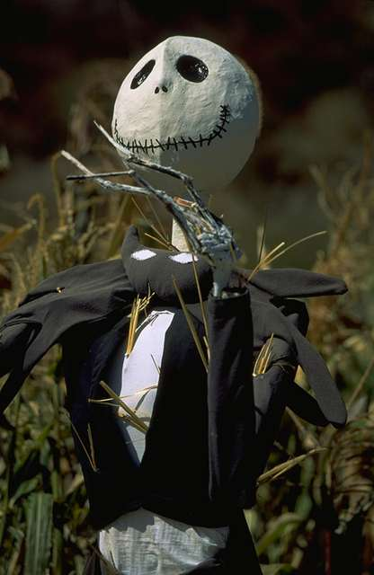 Jack Skellington Stalk