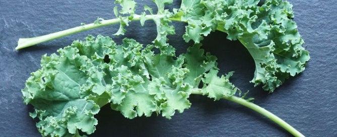 Grünkohl das heimliche Superfood im Garten selbst anbauen. Pflanzenportrait und Tipps.