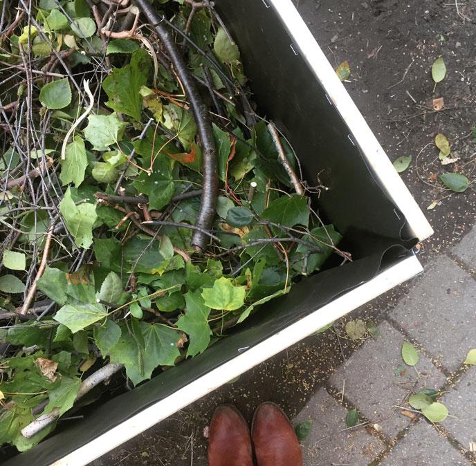 Der Herbst ist die ideale Jahreszeit um ein Hochbeet zu bauen. Wie das schnell und günstig geht, erfährst du hier...