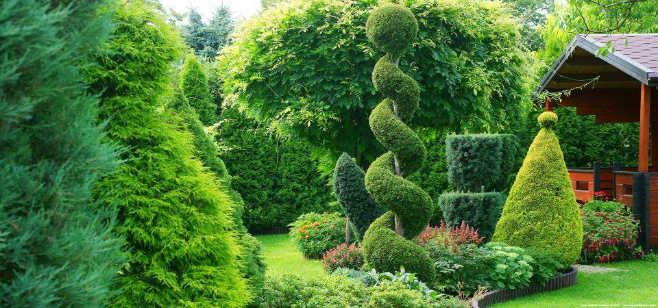 Fachmännische Kleingartenpflege in Hamburg