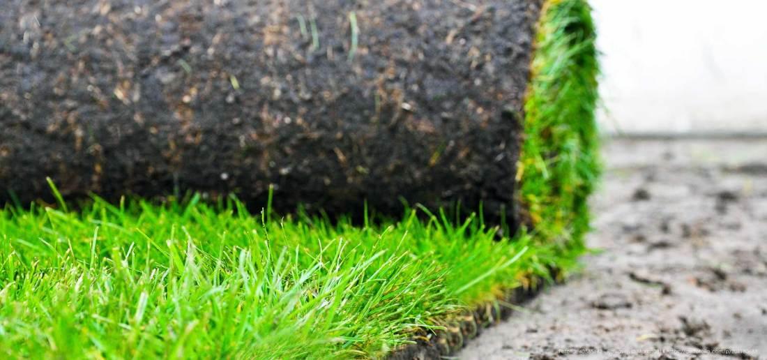 Wir bringen den Rasenbau in Hamburg ins Rollen