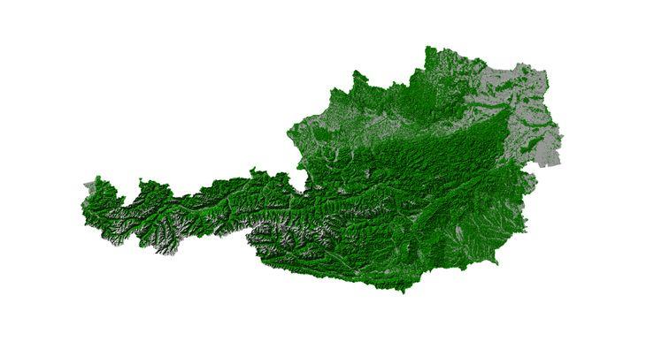 Der Wald in Österreich (c) proHolz Austria
