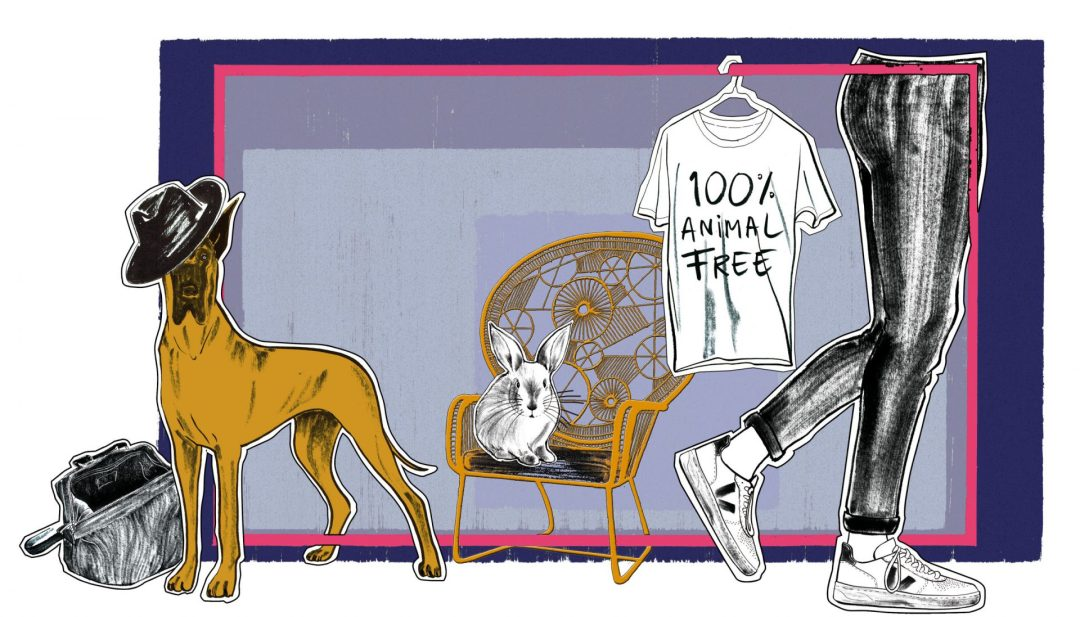 Dog chair and legs illustration