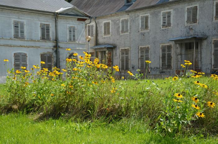 Château Parc de Wesserling