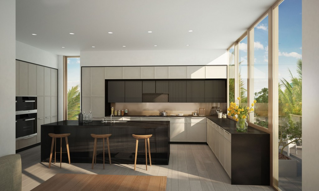 Modern Kitchen Platform Design