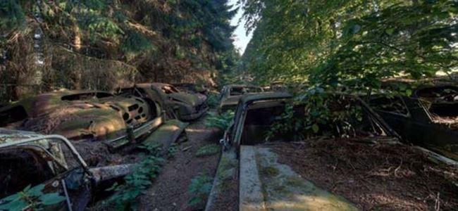 Ormana Araba Sakladılar