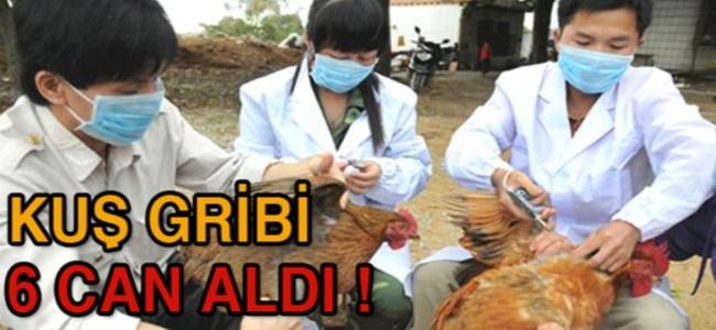 Çin'de kuş gribi yüzünden ölen sayısı 6'ya yükseldi !