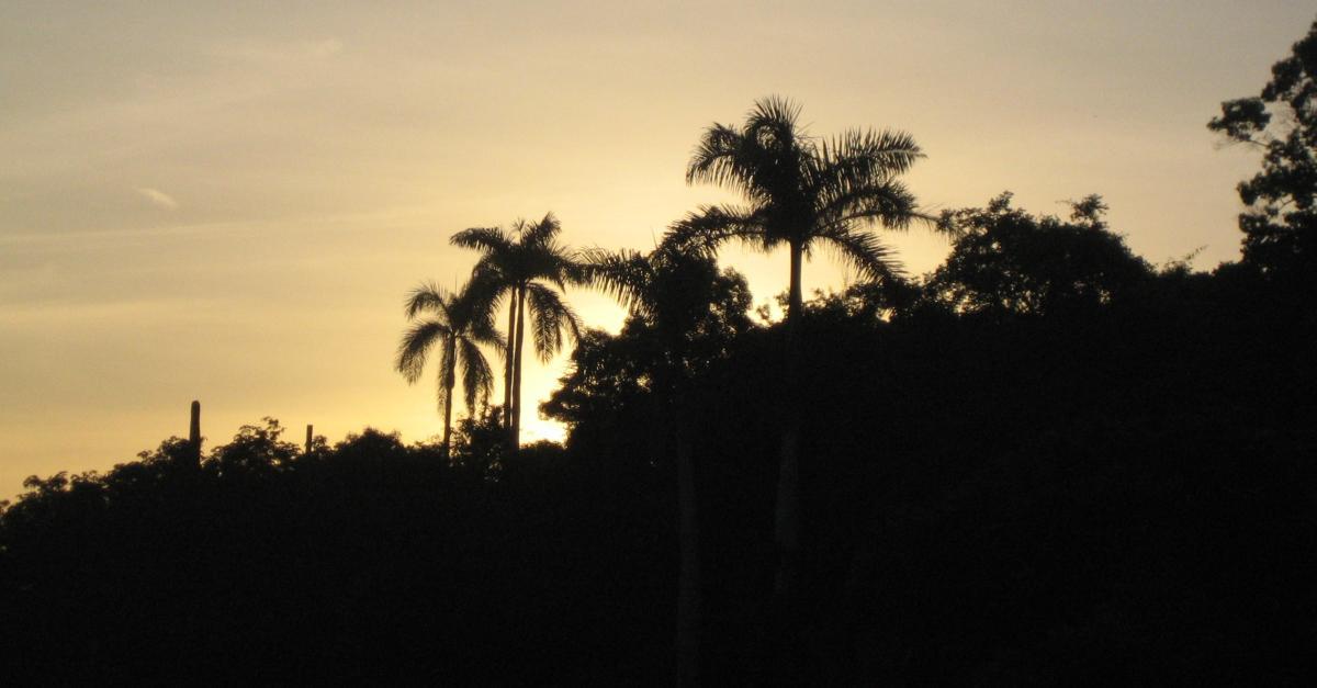 Kuba Reisetipps : Unsere 44 besten Tipps für den Kuba Urlaub