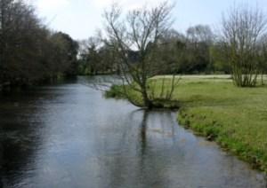Hermitage Stream