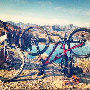 River Cyclery and Sport