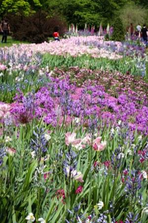 Spring walk Longwood Gardens