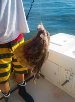 The stingray I caught.