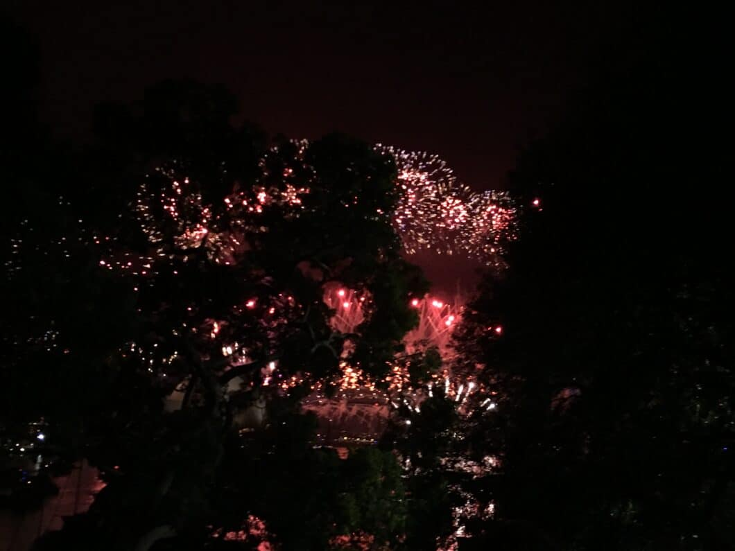 Watching Sydney's NYE Fireworks from Mrs Macquaries Point