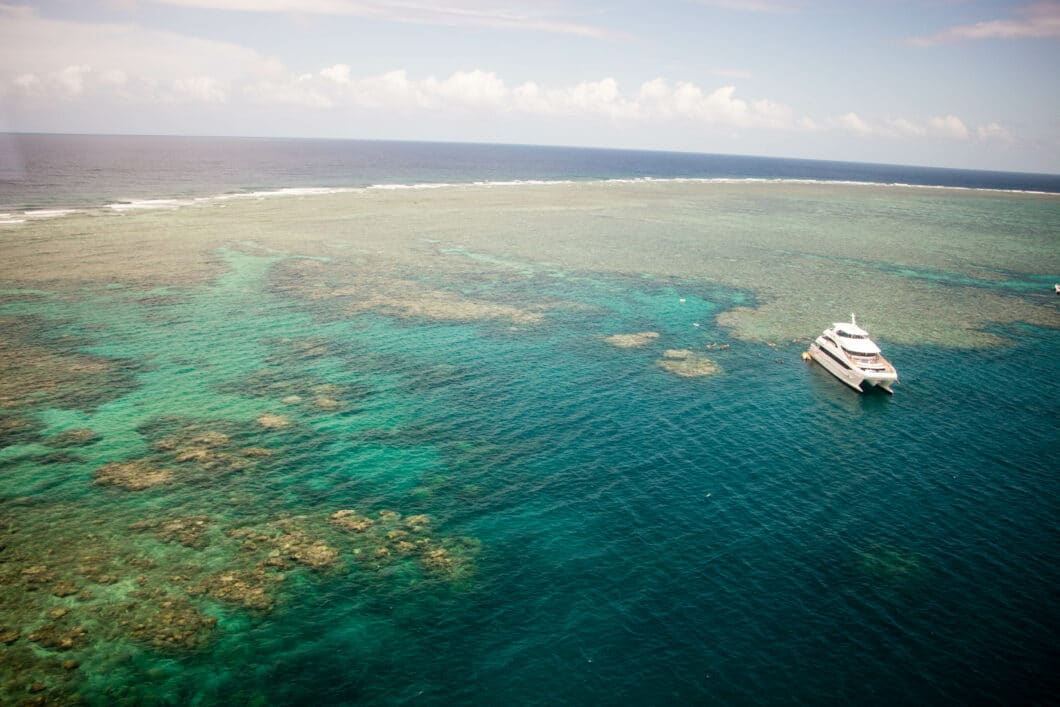 The BEST Great Barrier Reef Tour in Cairns, Australia + What to Know Before You Go