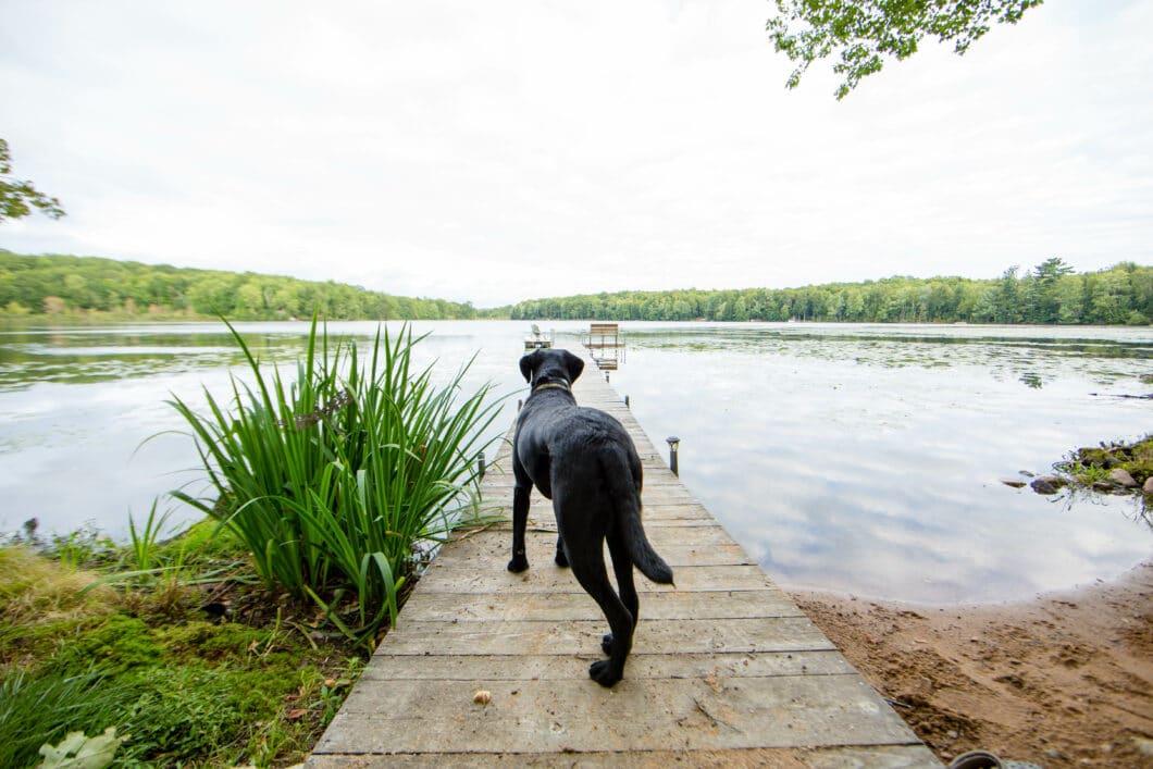 My Week in Wisconsin Photo Gallery