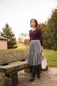 Metallic skirt for Winter