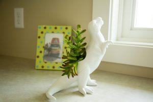 T Rex Planter