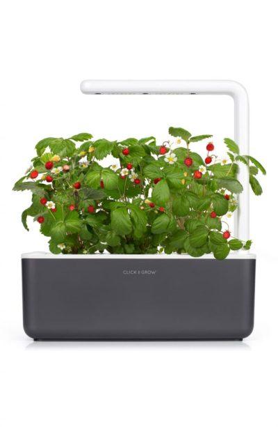 Smart Garden 3 Self Watering Indoor Garden CLICK & GROW