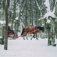 St. Petersburg During Winter