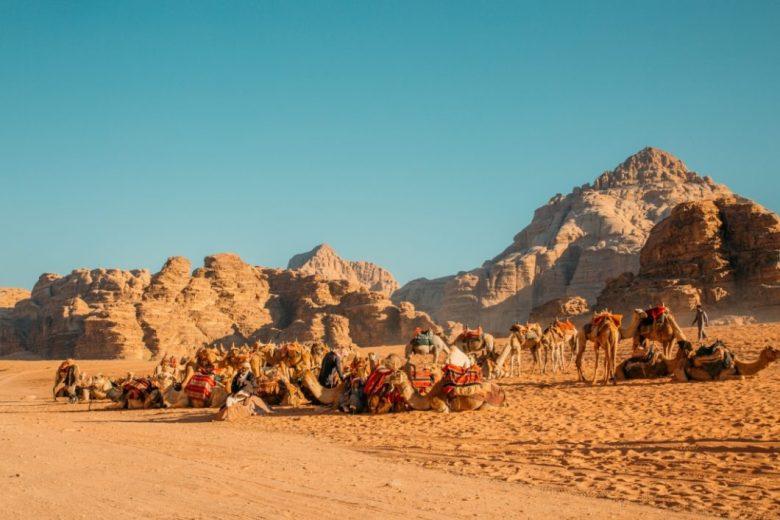 Wadi Rum Jeep Tour Photo Gallery