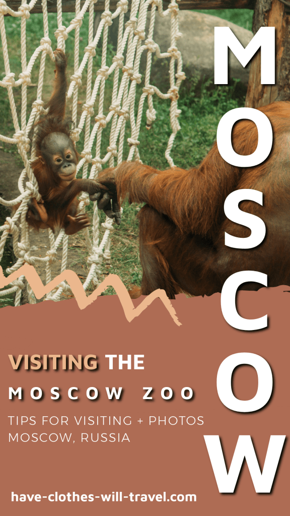 Tips for Visiting the Moscow Zoo + Animal Photos