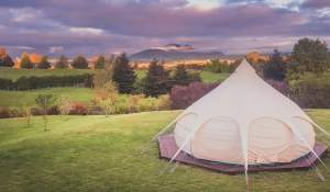 MountViews Glamping - Coolest Airbnb in New Zealand