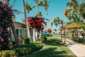 The walkout villas in the Caribbean Village