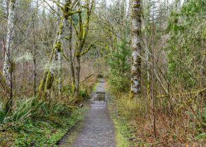 Wiouwash State Trail
