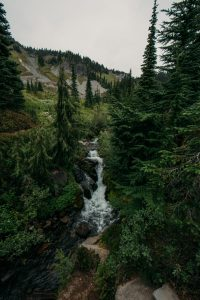 Myrtle Falls (Mount Rainier can be seen behind them on a clear day.)