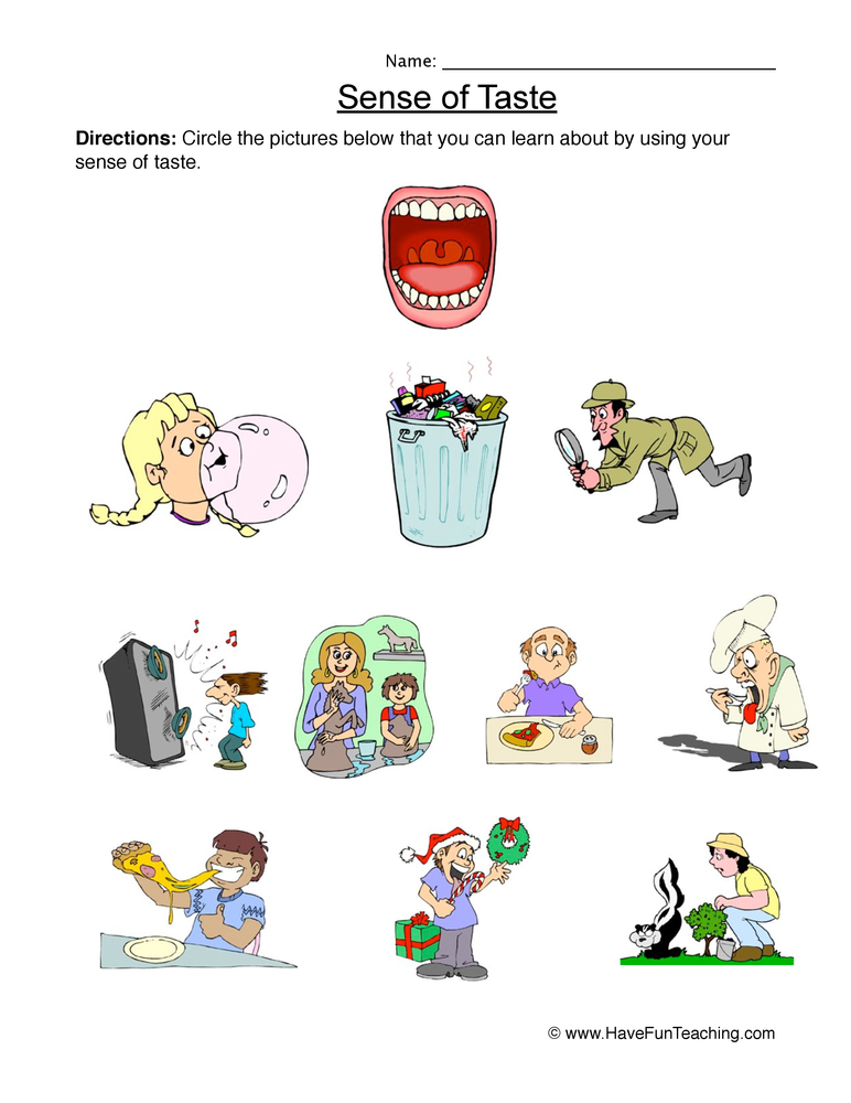 The Five Senses Worksheets For First Year