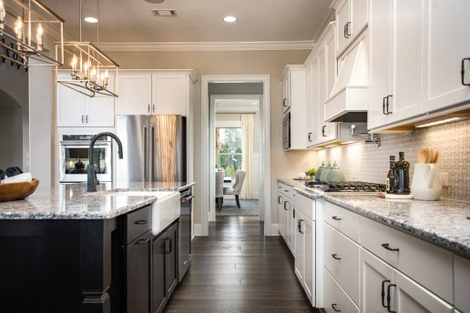 Haven-design-works-Atlanta-CalAtlantic-Atlanta-Briarstone at Nesbit Lakes-model-home-Kitchen