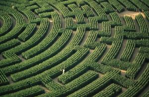 first step havoca maze