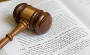 litigation havoca