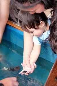 child holding marine critter