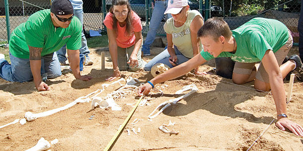 Forensic Anthropology Partnership Established