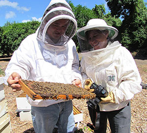 UH Honeybee Project researcher Ethel Villalobos, right, and staffer Scott Nikaido