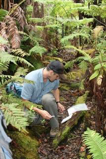 Cobian's fungi research is supported by a NSF Graduate Research Fellowship.