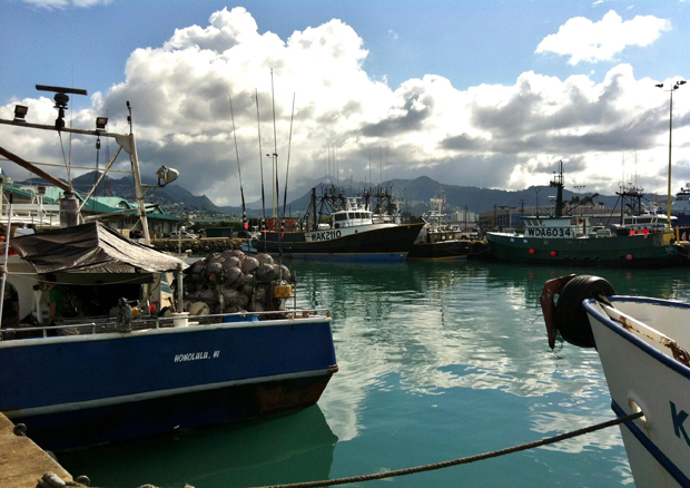 Fishing boats in Hawaiʻi, photo courtesy of Michele Barnes