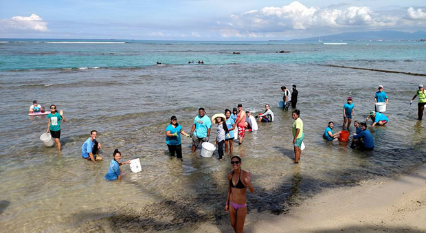 Volunteers at Waikiki reef clean up