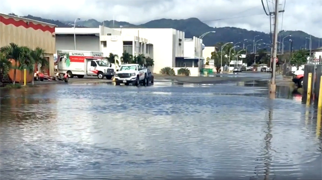 As Sea Level Rises, Much Of Honolulu And Waikiki Vulnerable To Groundwater Inundation