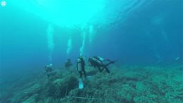 Divers gathering data on coral