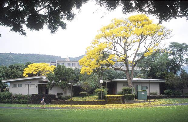 Aloha, Henke Hall