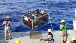researchers hauling up a trap onto the deck of the ship