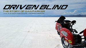 Poster for Driven Blind