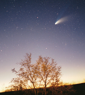 comet flying over trees