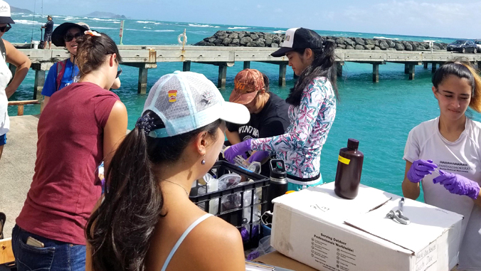 students on pier with water testing equipment
