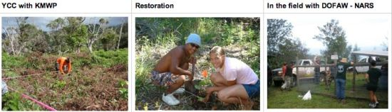 recover-youth-conservation-corps